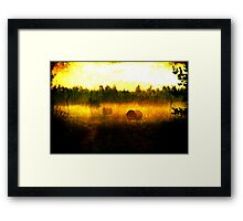 Hayballs Gone Wild Framed Print