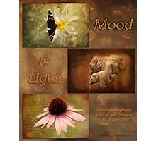 Mood and Light - Calendar Photographic Print