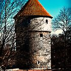 Tower, Spring. by tutulele