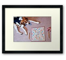 Dogs love to play games Framed Print