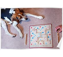 Dogs love to play games Poster