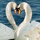 So in love by Lyn Evans