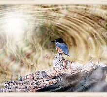 Kingfisher: Illumined Realms by Cherubtree