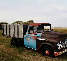 1430 Old Chevrolet Truck by Larry Trupp
