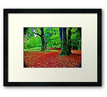 Fractalius Woods Framed Print