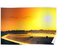 Morning light 2 Poster