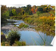East Don Parklands Wetlands Poster