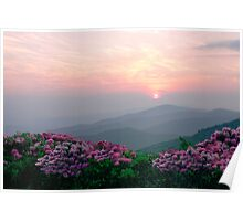 Rhododendron Sunrise Poster