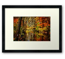 Bob's Creek Framed Print