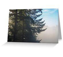 fir trees waking Greeting Card