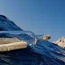 Bottle containing message floating in sea by Sami Sarkis