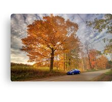 Coupe in the Fall Metal Print