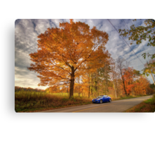 Coupe in the Fall Canvas Print