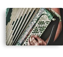 The Accordion  Canvas Print