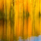 Autumn Abstraction by Greg Booher