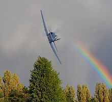 Rainbow Fury by Dave Godden