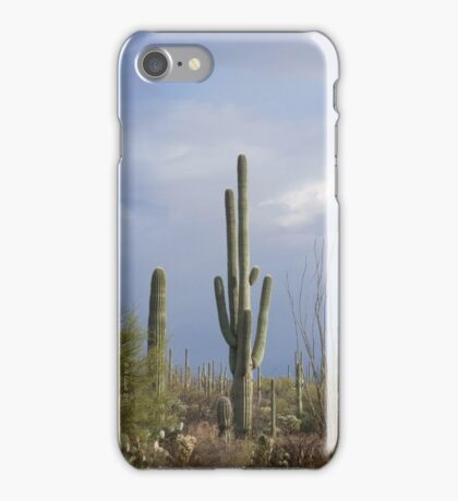 Late Afternoon in the Desert iPhone Case/Skin
