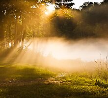 On a Beam of Light 2 by Greg Booher