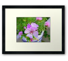 Pot of flowers Framed Print