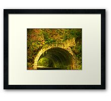 Tunnel in the Woods Framed Print