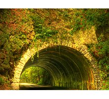 Tunnel in the Woods Photographic Print