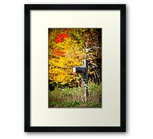 The Colours Of Fall  Framed Print
