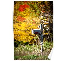 The Colours Of Fall  Poster