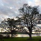 Lough Swilly  by Fara