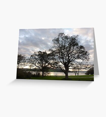 Lough Swilly  Greeting Card