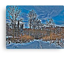 Sandals in the Snow Canvas Print