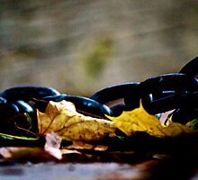 Fall and Chain by siana  muser