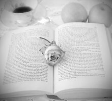 A quiet place and a well worn book by korinneleigh