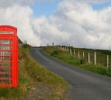 Phone box by Fiona MacNab