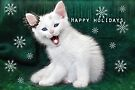 Catching Snowflakes ..Happy Holidays by Elaine  Manley