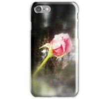 rosebud in the snow  iPhone Case/Skin