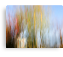 The Front Yard Canvas Print