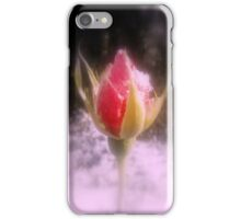 rosebud in the snow 4 iPhone Case/Skin