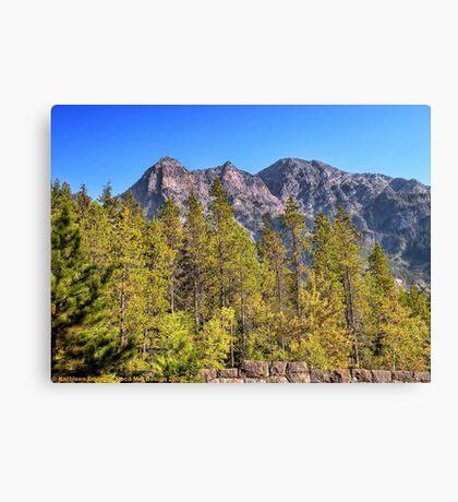 Glacier Peaks Canvas Print