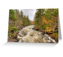Laurentian Mountains Greeting Card