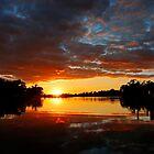 Fall In Sun Set by Eileen McVey