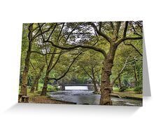 Scenic Parkway Greeting Card