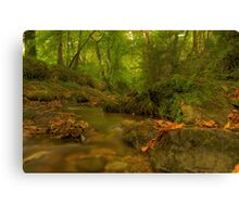 The River Song Canvas Print