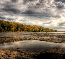 Fall Colors Coming On by Bob Dilworth