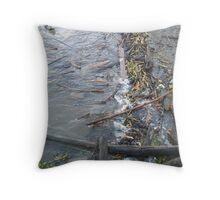 river debris Throw Pillow