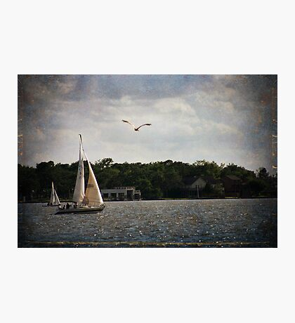 Sailing on Clear Lake Photographic Print