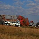 Autumn country barn near Echo Bay Ontario Canada by Eros Fiacconi (Sooboy)