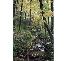 Cold Spring Autumn Glory Photographic Print