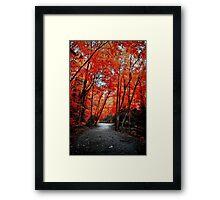 Finger Lakes Region of NY Framed Print