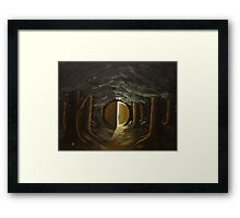 World in the Woods Framed Print