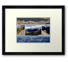 MY STOMPING GROUNDS (and Chippy's too) Framed Print